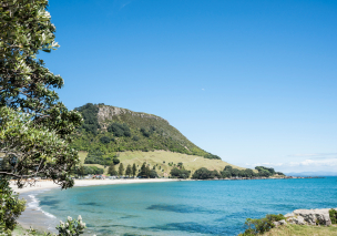 Tauranga and Surrounds